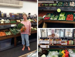 Spotlight on... Willow Tree Farm Shop